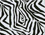 Premier Prints Zebra - Black