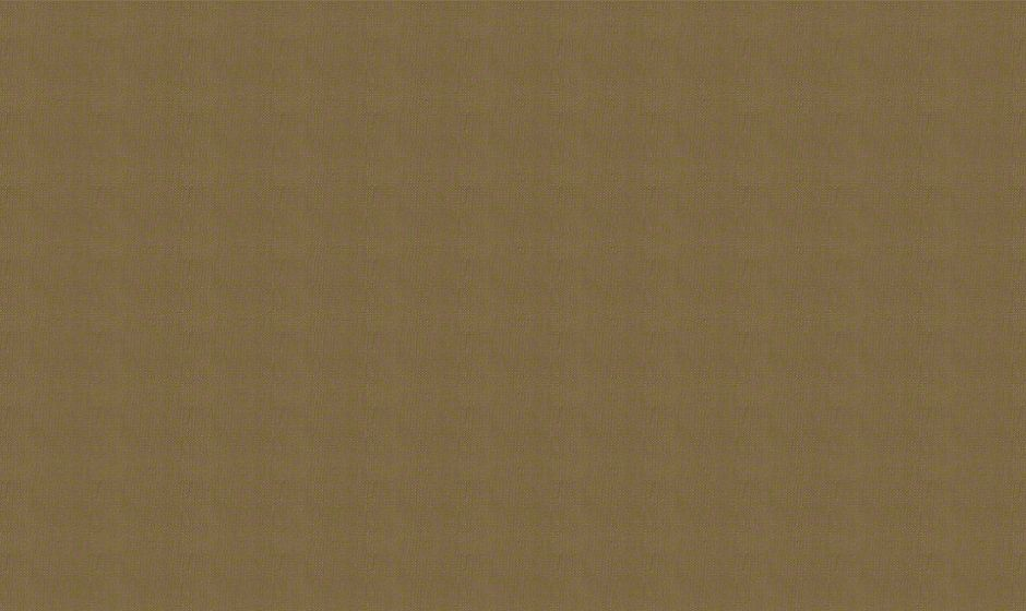 Phifer Incorporated  - 3025696 fabric image